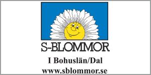 29_sblommor