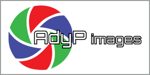 6_adyp_images